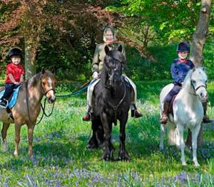 queen-windsor-grandchildren-horse